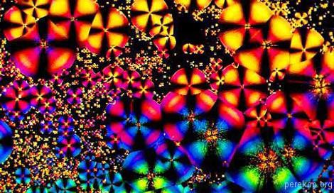 Пиво под микроскопом