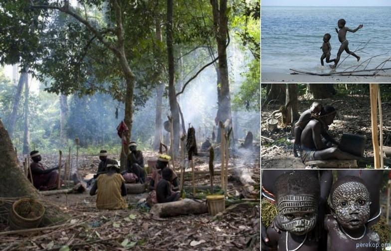 Племя Ярава